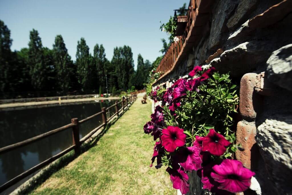 bioittica-della-sorgente-fiori-e-lago
